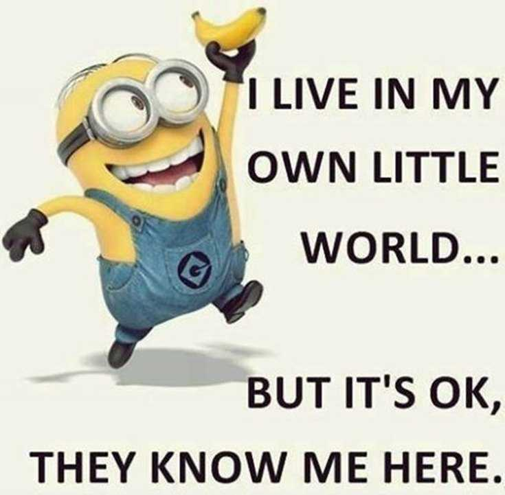 50 Best Funny Minion Quotes Funny Quotes Life 2