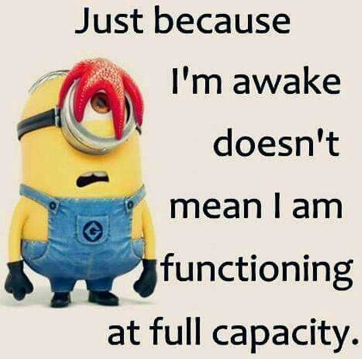 50 Best Funny Minion Quotes Funny Quotes Life 27