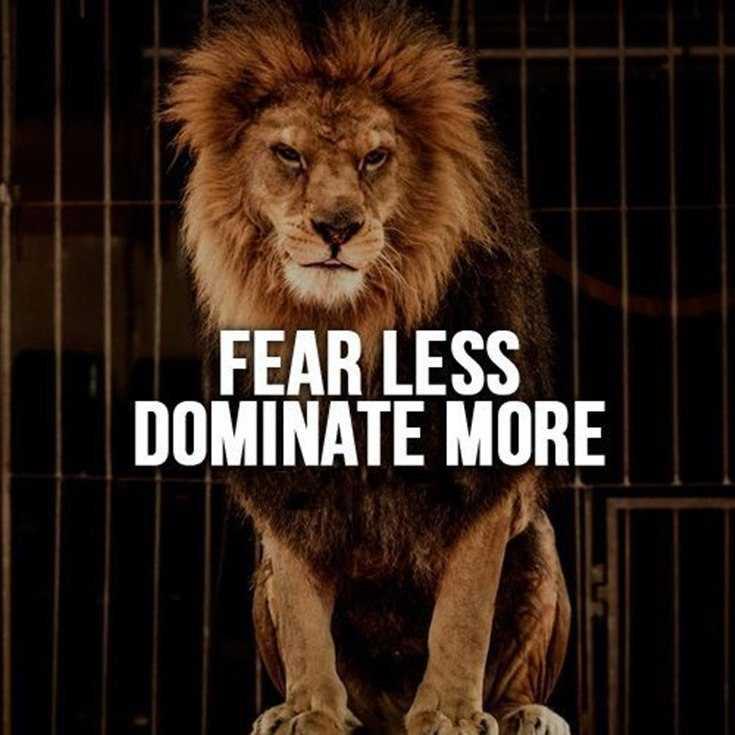 58 Motivational Quotes Quotes About Success 1