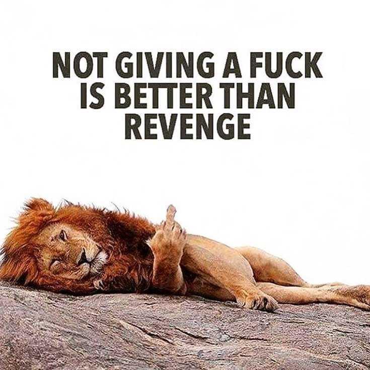 58 Motivational Quotes Quotes About Success 17