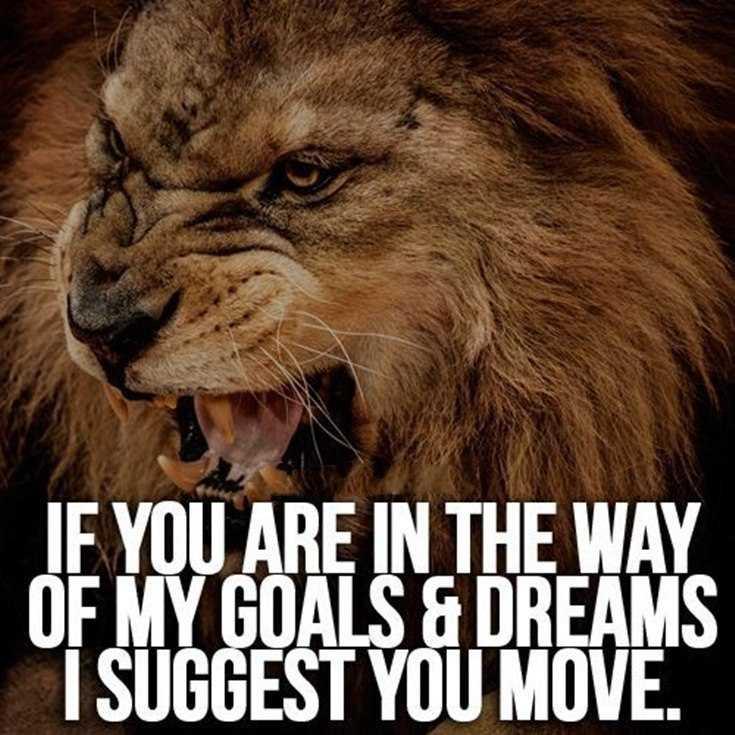 58 Motivational Quotes Quotes About Success 23
