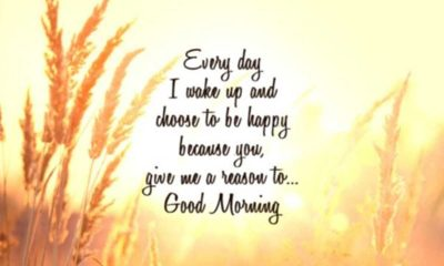 Beautiful Good Morning Quotes with Images That Will Enrich Your Day
