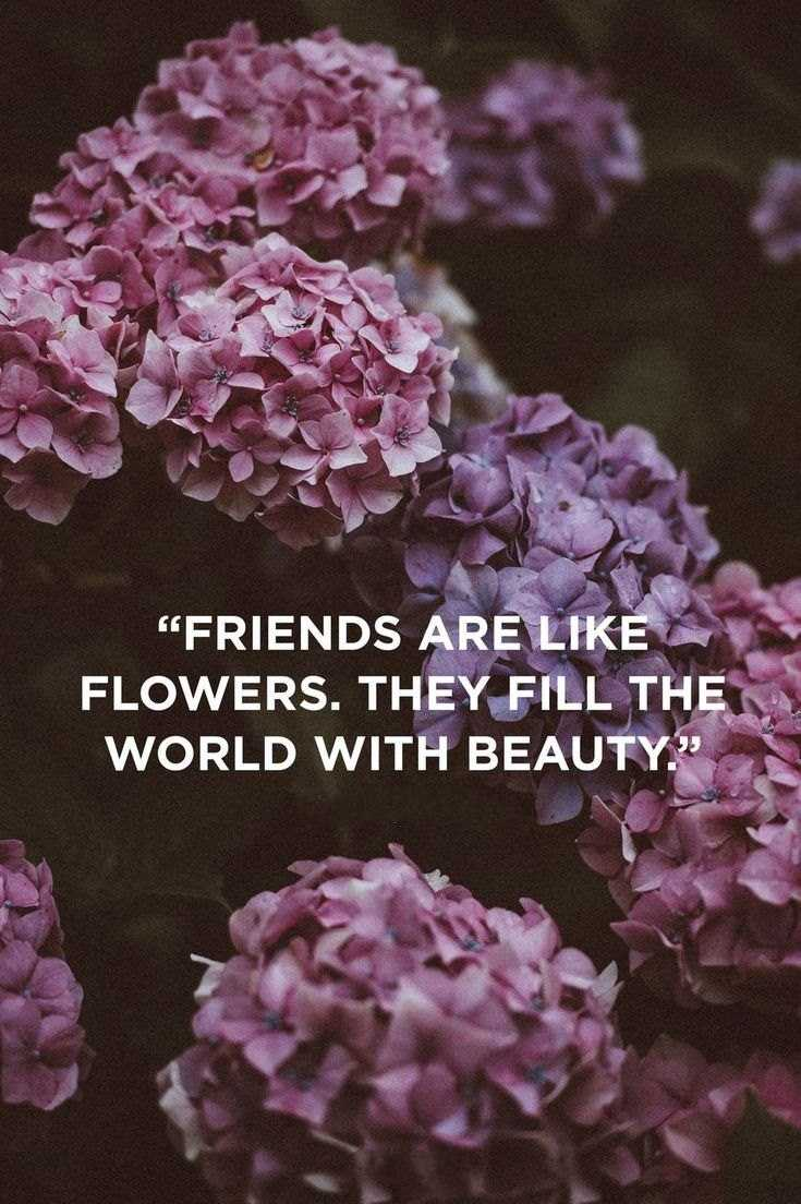59 True Friendship Quotes Best Friends Forever Quotes 18