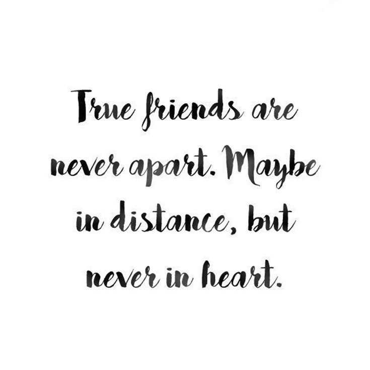 true friendship quotes best friends forever quotes boom sumo