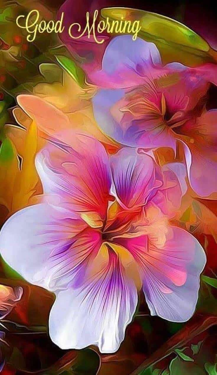 56 Best Good Morning Flowers Images Boom Sumo