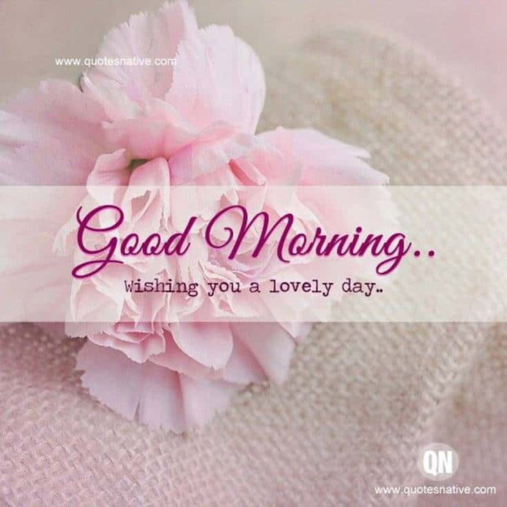 Good Morning quotes and wishes with Flowers images