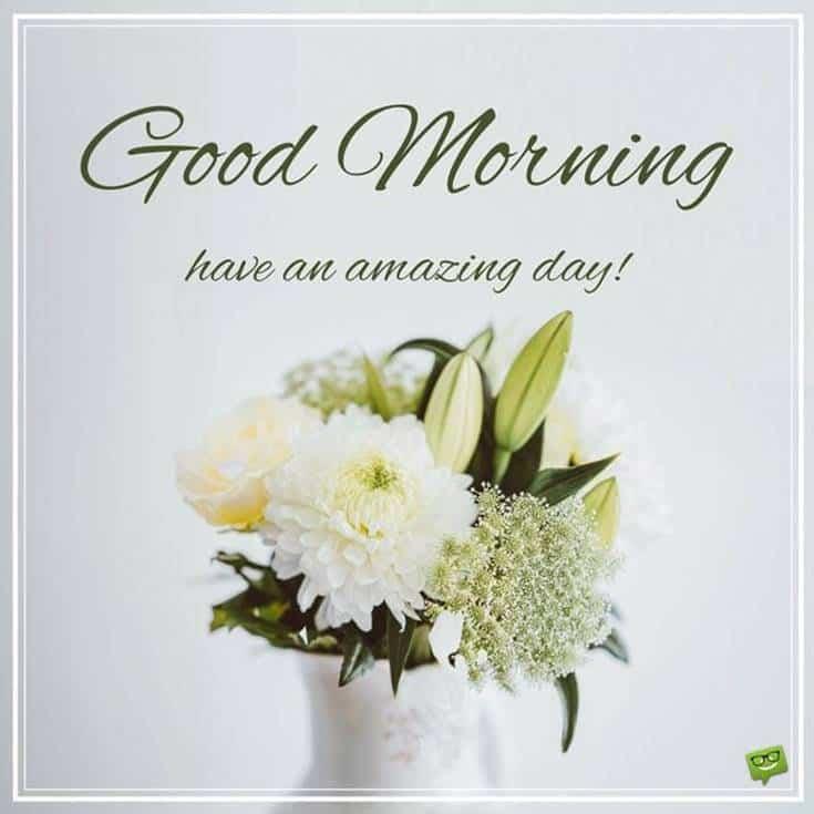 Good Morning Flowers images amazing day
