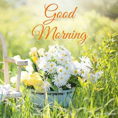 65 good morning wishing you a great day and good morning blessing messages