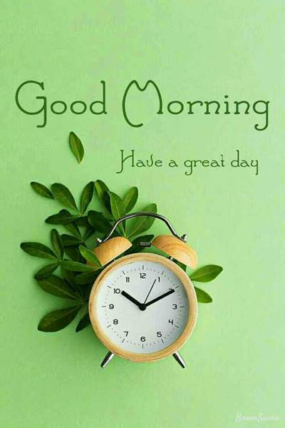 65 good morning msg with quotes and good morning message text