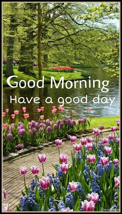 65 very good morning to you beautiful morning messages and morning text quotes