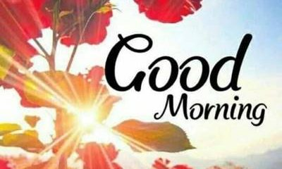 65 Good Morning Quotes and Wishes with Beautiful Images 4