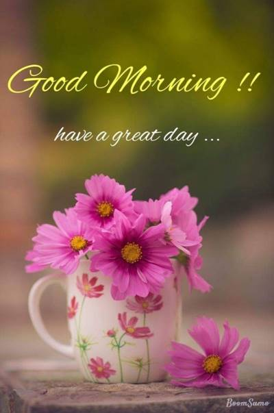 65 best good morning messages on good morning sweet sms