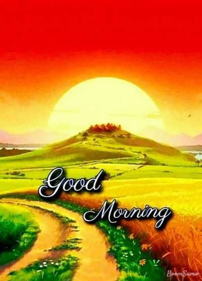 65 good morning wishes for someone special and happy morning messages