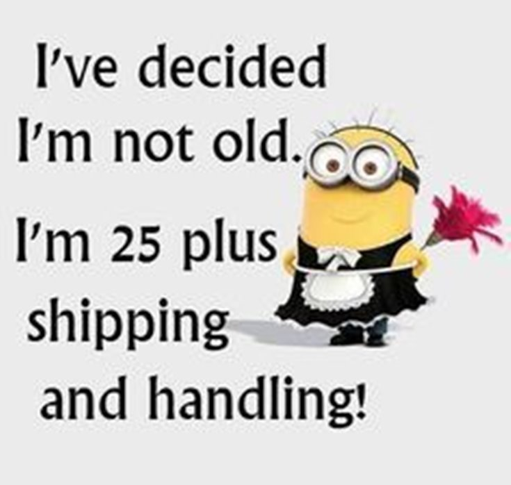 New Funny Minion Quotes with Images 11