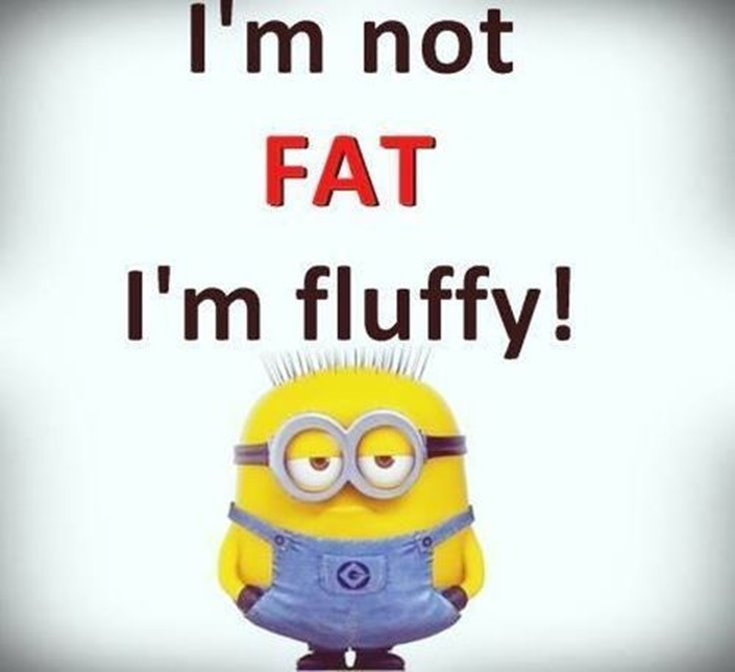 New Funny Minion Quotes with Images 15