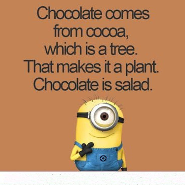 New Funny Minion Quotes with Images 19