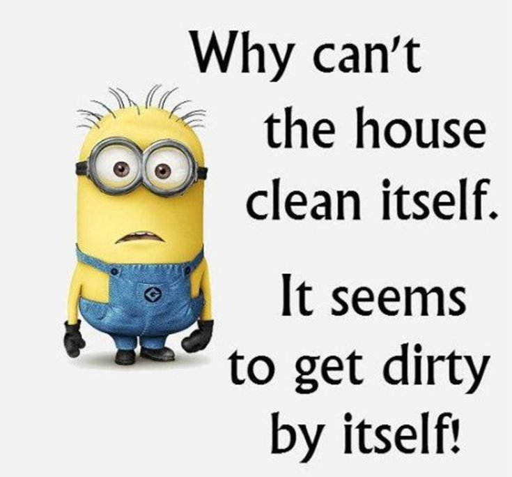 New Funny Minion Quotes with Images 25