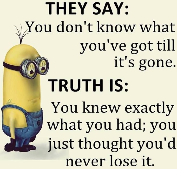 New Funny Minion Quotes with Images 27