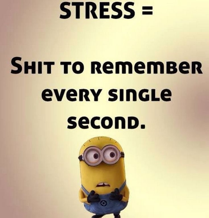 New Funny Minion Quotes with Images 28