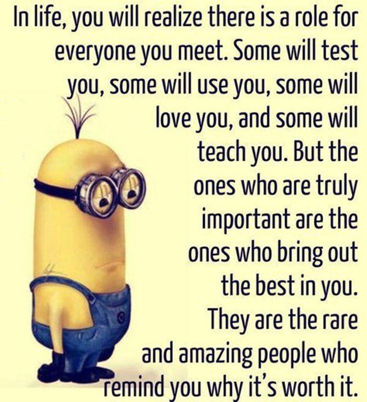 New Funny Minion Quotes with Images 5