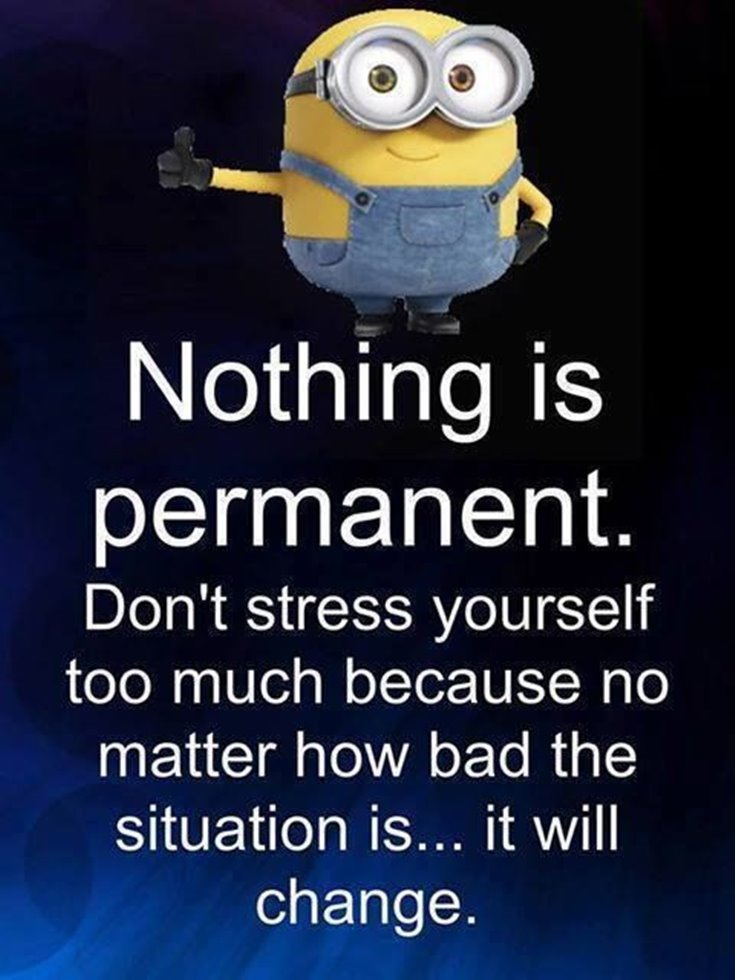 New Funny Minion Quotes with Images 7