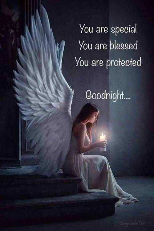 Good Night Images With Beautiful Quotes 5