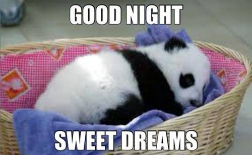 Good Night Memes Funny Goodnight Memes Images 1