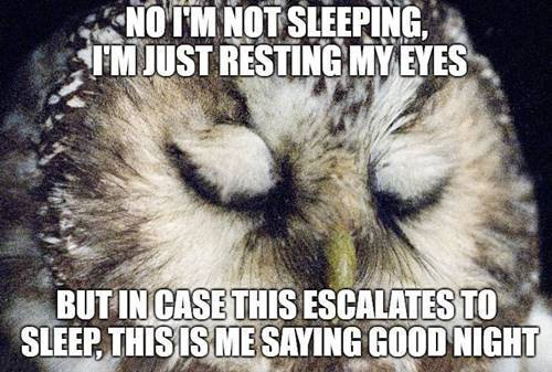 Good Night Memes Funny Goodnight Memes Images 34