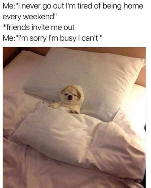 Good Night Memes Funny Goodnight Memes Images 5