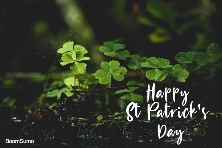 st patricks day quotes and wishes for st patrick s 26