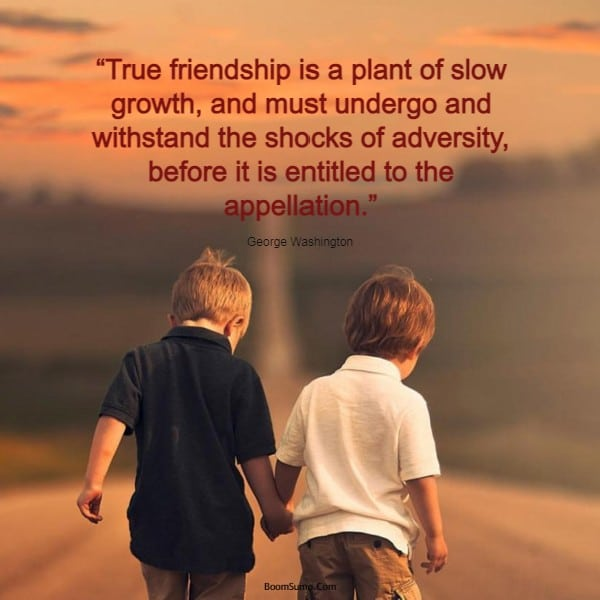 Top 50 True Friendship Quotes | True friends quotes, Quotes about real friends, True friendship quotes
