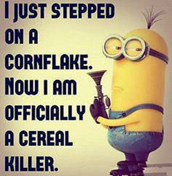50 Funny Jokes Minions Quotes With Images minion quotes from despicable me