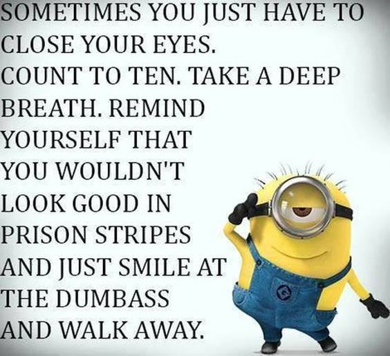 50 Funny Jokes Minions Quotes With Images inspirational minion cute minion quotes