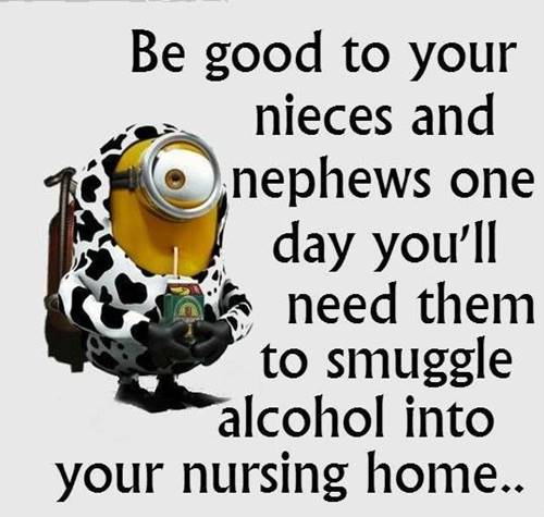 38 Fun Minion Quotes Of The Week Funny Images 1