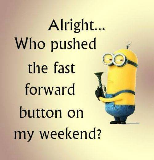 38 Fun Minion Quotes Of The Week Funny Images minions images with quotes