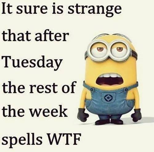 38 Fun Minion Quotes Of The Week Funny Images funny status about relationships
