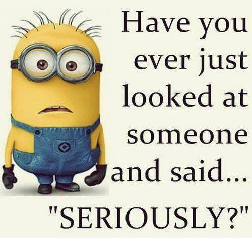38 Fun Minion Quotes Of The Week Funny Images 33