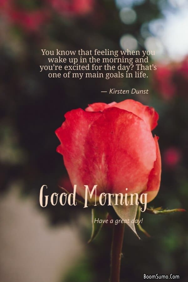 Good morning quotes, messages and images to begin the day | Good morning to my love, Funny good morning quotes, Good morning photos, Good morning pictures