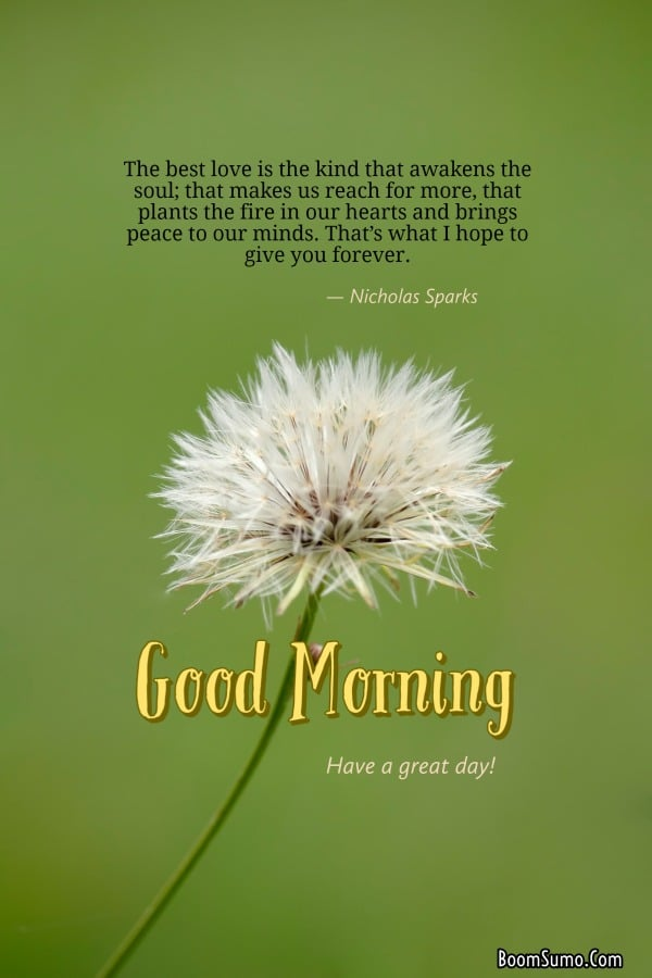 Good morning texts for lover | Good morning poems, Poems for him, Love you poems pictures