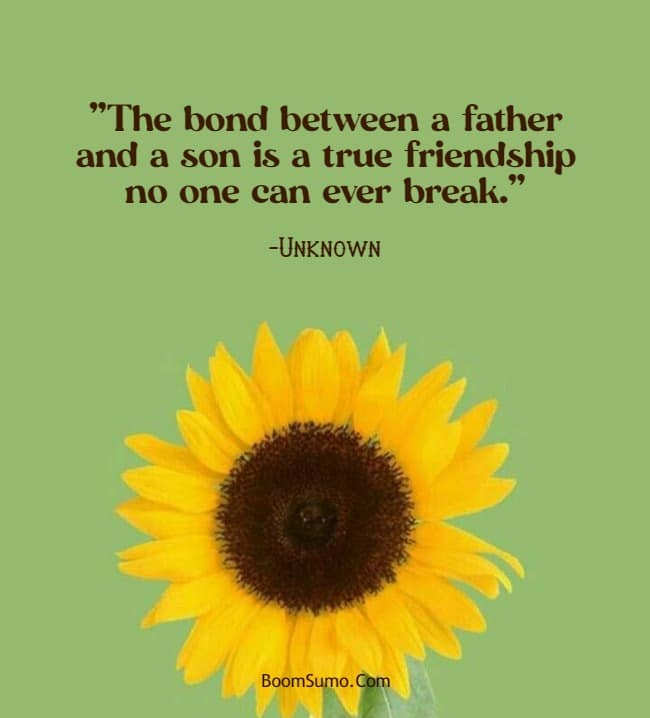dad quotes from son