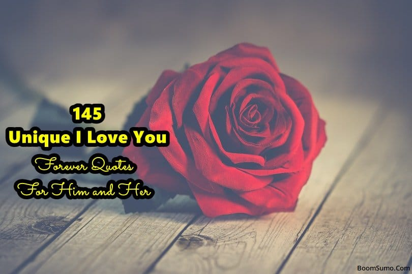 Unique I Love You Forever Quotes For Him and Her