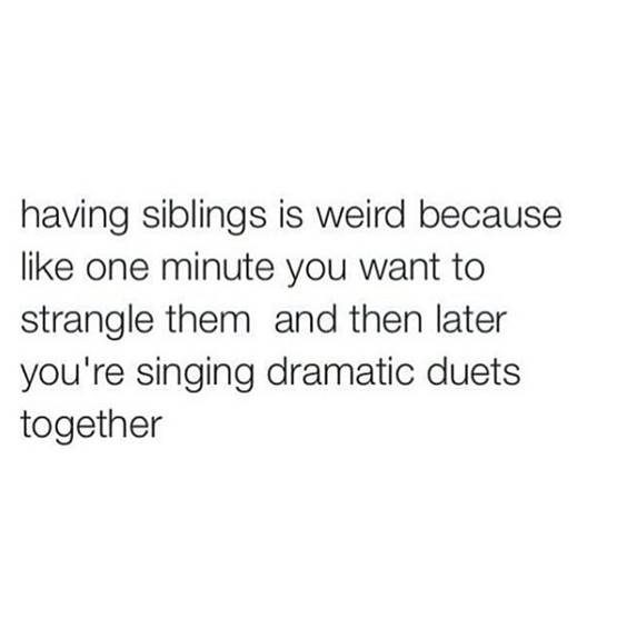 Brother And Sister Funny Quotes