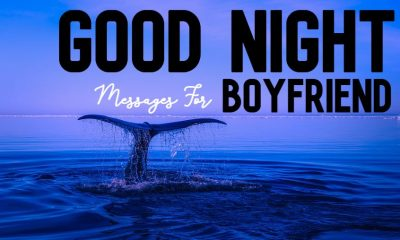 good night messages for boyfriend to make him feel the love
