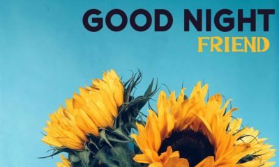 good night messages for friends – the best collection