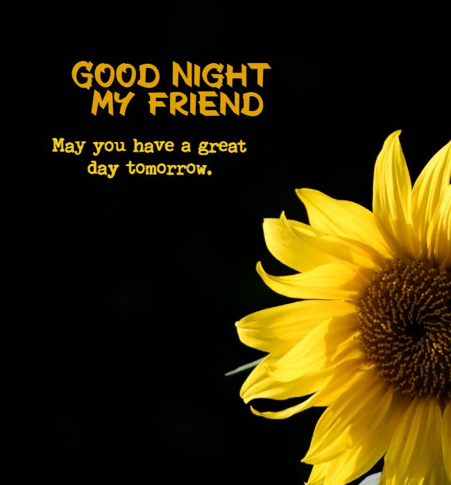 good night messages for friends 1