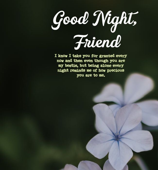 good night texts for friends