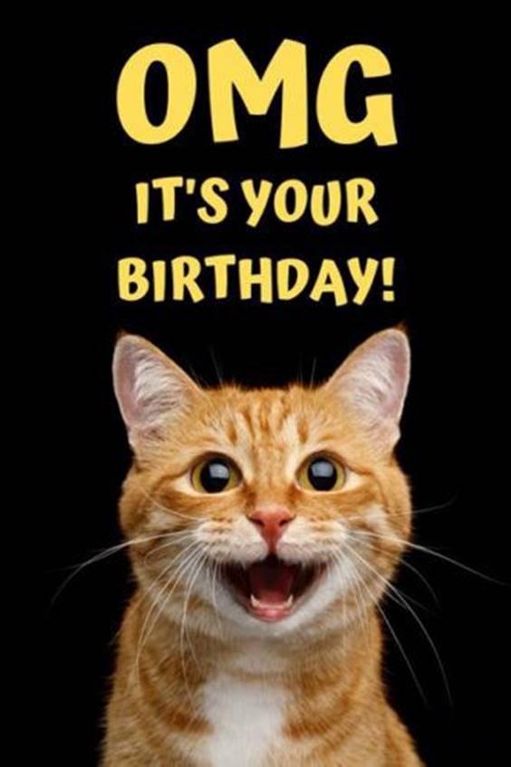 happy birthday amazing