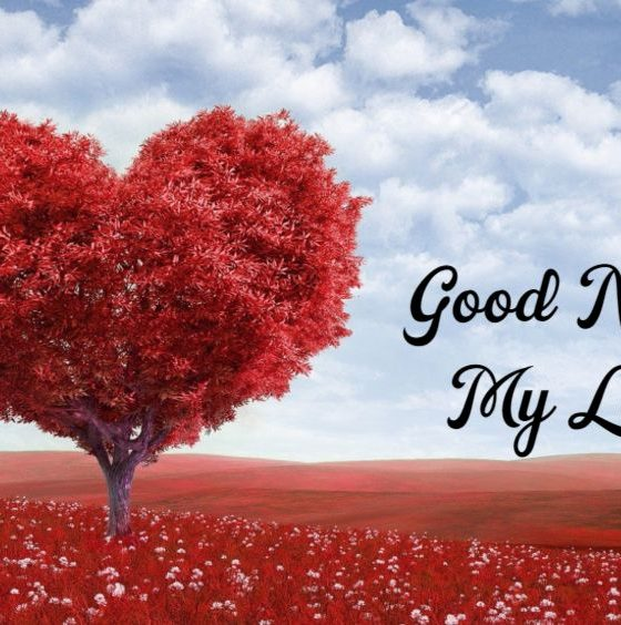 Good Night Love Messages with Wishes Greetings Pictures