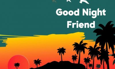 Good Night Quotes for Friends with Wishes Greetings Pictures