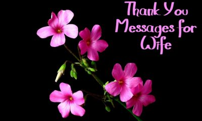 Heartfelt Thank You Messages for Wife With Images Appreciation Quotes On Thankfulness